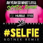 Will Sparks & Elen Levon vs The Chainsmokers - Ah Yeah So #SELFIE (Migno Mashup)