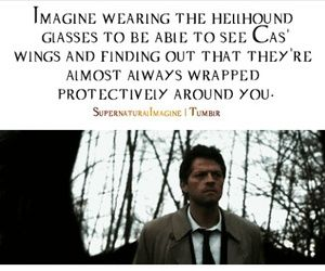 (be Cas, Im a girl named Maxine keep in mind im only on season 6, episode 8 or 9)) My eyes widen slightly as i see his wings and notice they are almost wrapped protectively around me, before i notice another Hellhound coming out way.