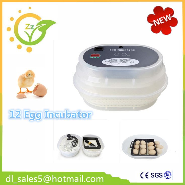 Automatic egg incubator Chicken Incubator Poultry Harcher Quail 12  brooder machine for sale