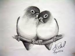 Resultado de imagem para drawing color pencils bird