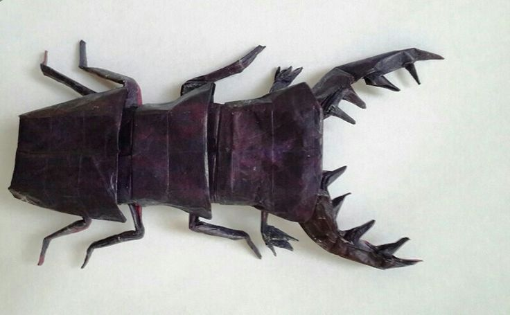 11 Best Origami Insects Images On Pinterest Origami Insects