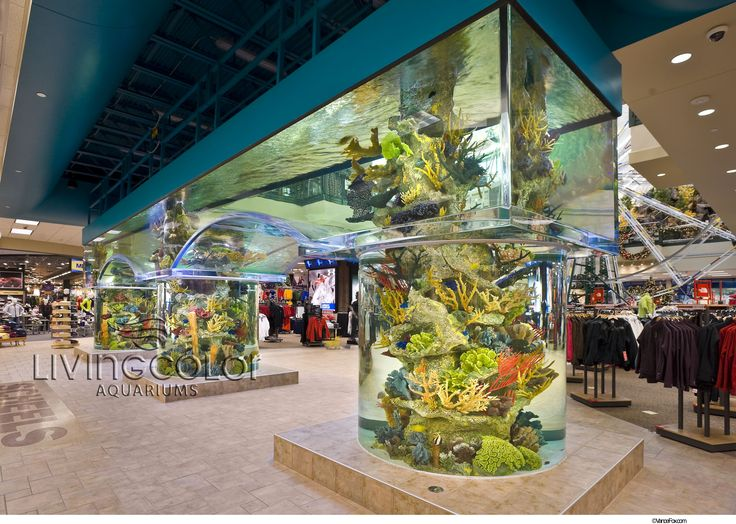 7 best living color aquariums images on pinterest custom aquariums fish tanks and fish aquariums. Black Bedroom Furniture Sets. Home Design Ideas