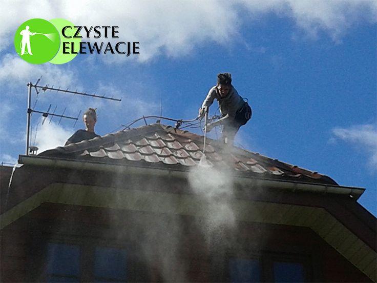 Mycie dachu, usuwanie glonów.