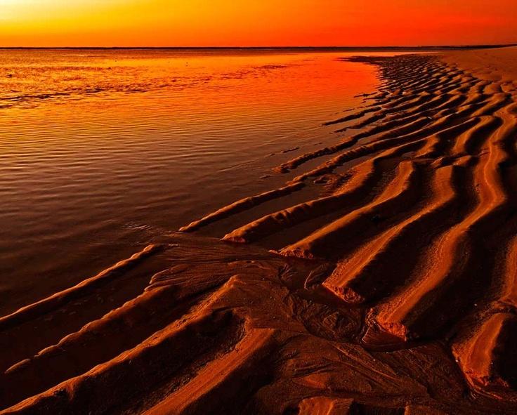 Ningaloo Reef Beach - WA, Australia ..... stunning.