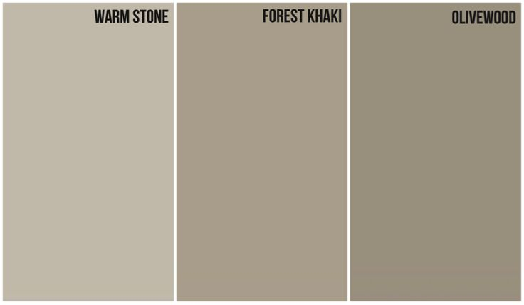 Tan With Warm Gray Undertone House Color Glidden