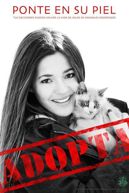 En Wakuplanet apoyamos 'Ponte en su piel'. La Sociedad Protectora de Animales y Plantas de Madrid- SPAP lanza su campaña, amadrinada por la mallorquina Malena Costa, con la intención de fomentar la adopción de animales de manera responsable.