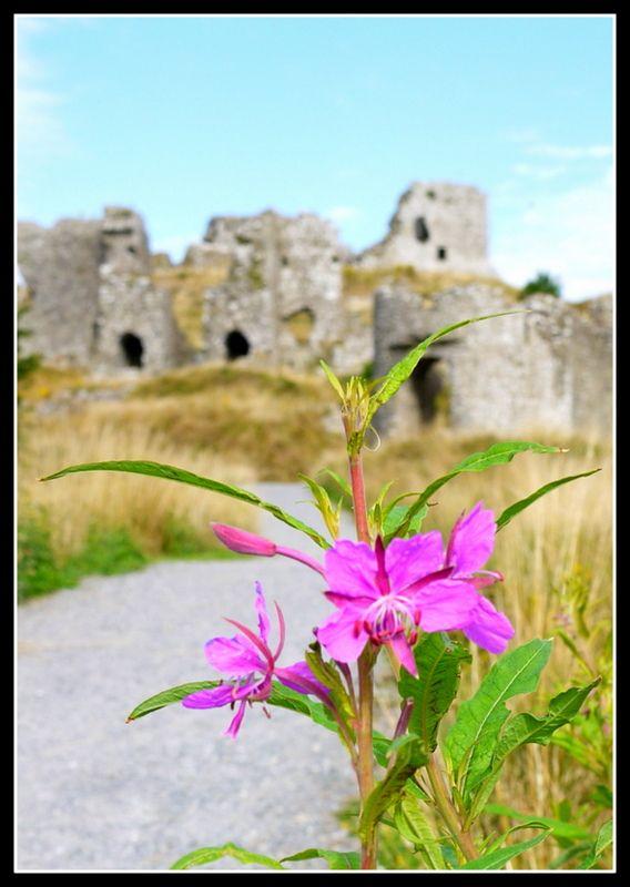 The Rock of Dunamaise, Co. Laois, Ireland
