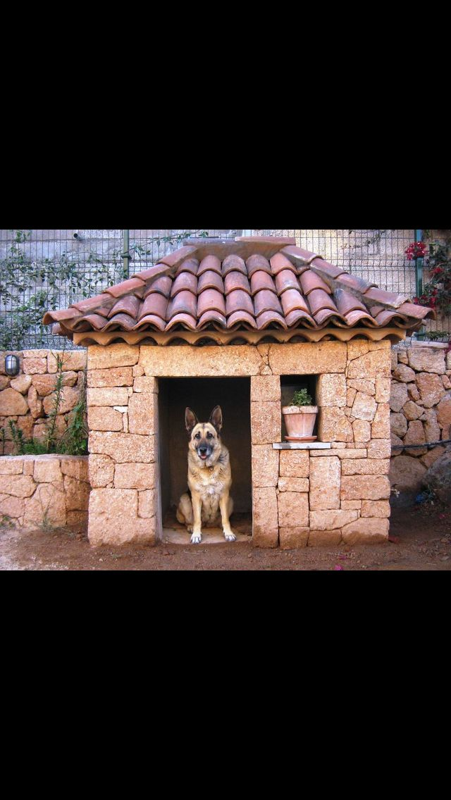 17 Best Ideas About Cool Dog Houses On Pinterest Pet
