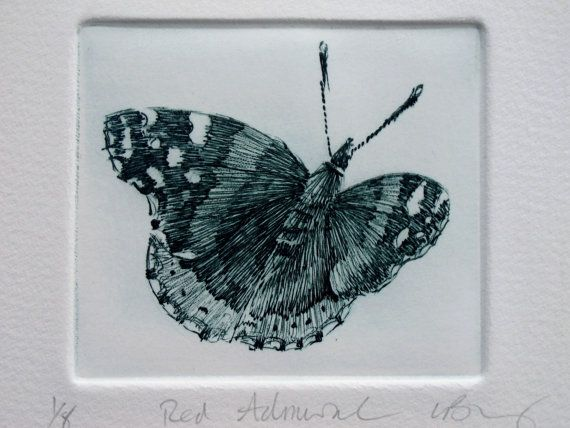 Red Admiral Butterfly print. Fine art drypoint on Etsy, $55.36 AUD
