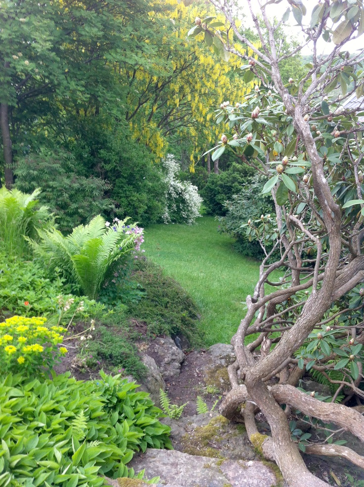 Love this part of my garden