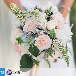 Beautiful Sam's bouquet. Sweet, vintage and sooo pretty! #Jademcintoshflowers #jamesdayphotography #februaryweddingflowers #summerweddingflowers #bistromolines #huntervalleywedding #huntervalleyweddingflowers ・・・How about this supremely awesome bouquet by @jademcintoshflowers!! Wow!