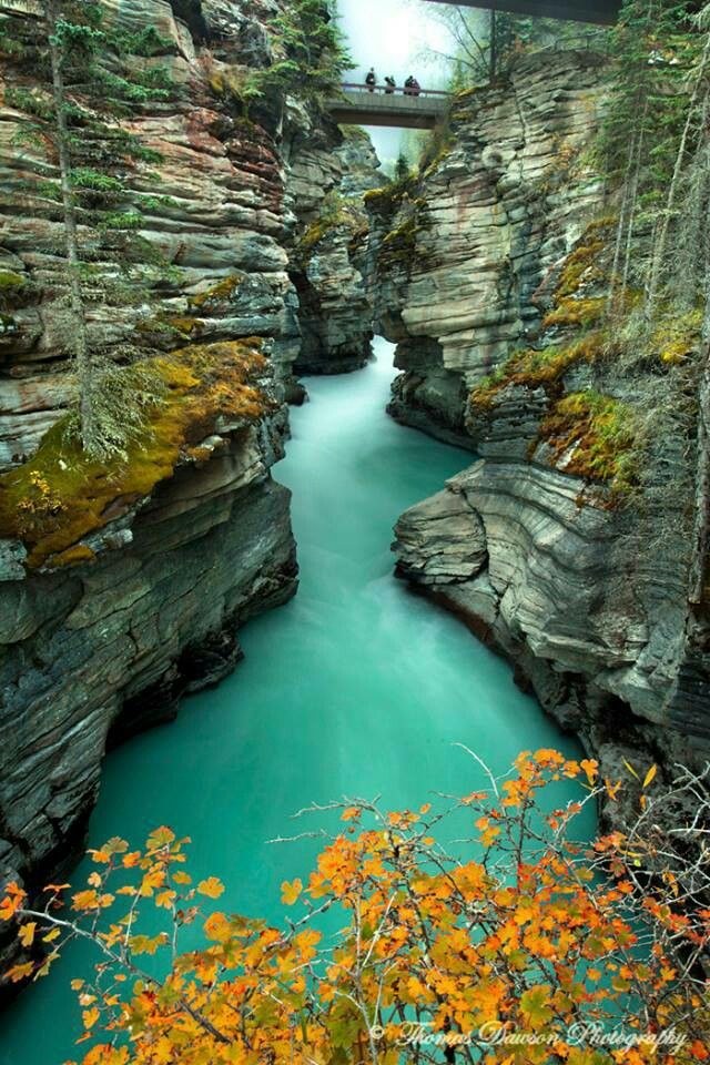 Sunwapta Gorge, Alberta Canada (one day I will move to this glorious provience)