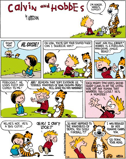 Calvin & Hobbes How much do I love the thought process of Bill Waterson? :)