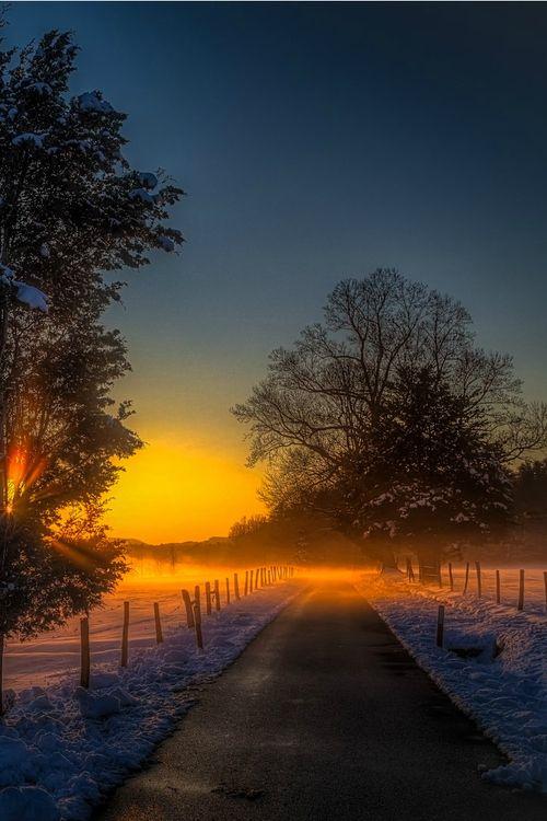 Path | 道路 | Chemin | путь | Sentiero | Camino | Dōro | Pasaje | проезд | Smoky Snowy Misty Sunset, Frank Delargy driving through cades cove