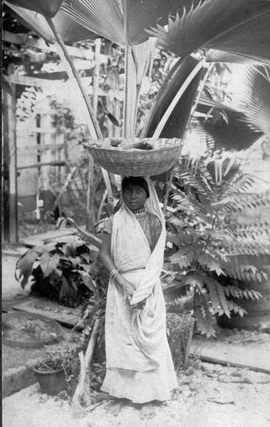 Foto. Een Hindoestaanse vrouw uit Suriname.