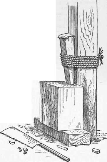 Fig. 3.   A Japanese Carpenter's Vise. From Morse's Japanese Homes.
