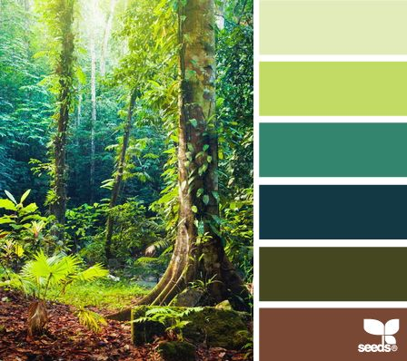 """""""Color Forest"""" from Design-seeds.com. I just love the gradation from lime green to deep teal in the picture. I think copper accents would work with this palette as well."""