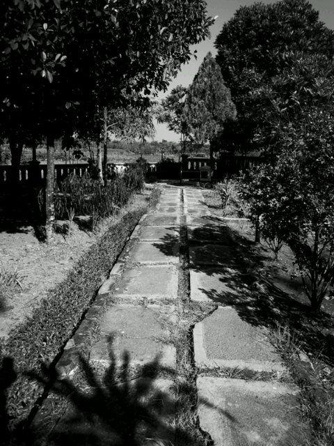 sunyinya pekarangan museum trinil, Ngawi. | via @hennni