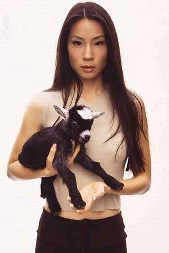 Lucy Liu - photo postée par salamanca12