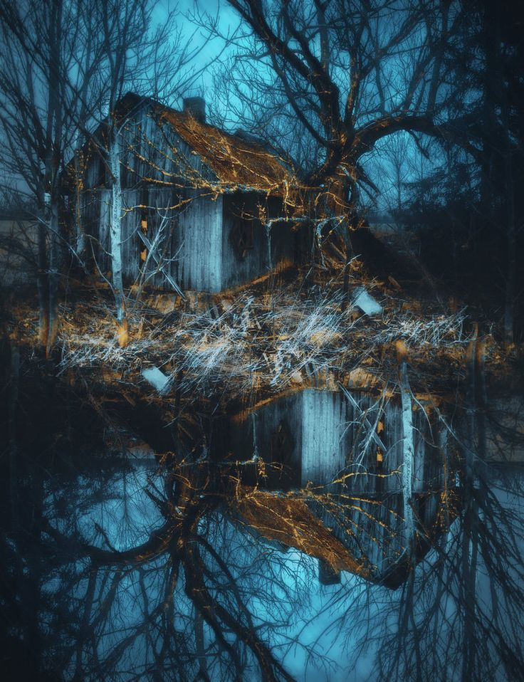 Art of Visuals Collective : Photo