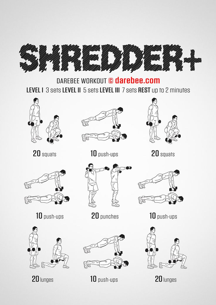Shredder Plus Workout - Concentration - Full Body
