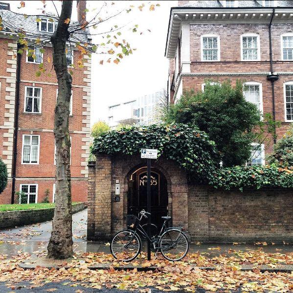 breadandolives: Holland Park, London