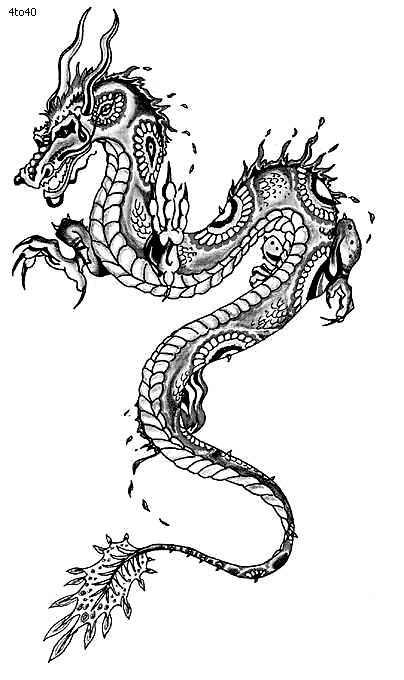 Line Drawing Dragon Tattoo : Best dragons images on pinterest kite chinese dragon