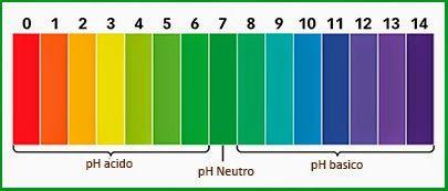 La Frutta che Paradiso: L'importanza del PH alcalino
