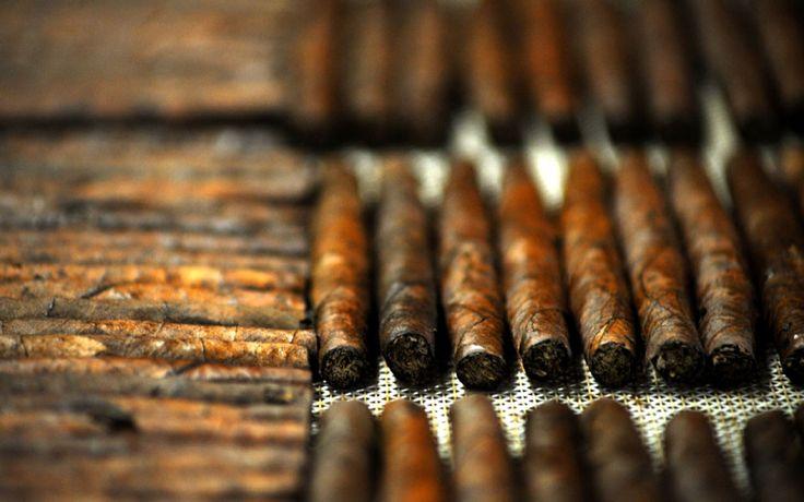 Risultati immagini per manifattura sigaro toscano
