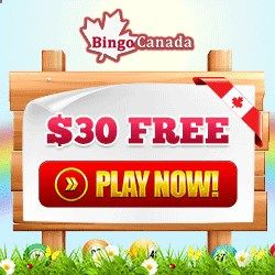 Start Winning Real Cash Money Now Having Fun Playing The Best Online Bingo Games Free With The BingoCanada  BingoForMoney Backyard Paradise Tournaments.