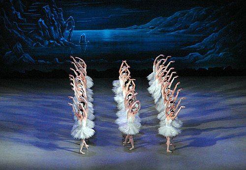 Image illustrative de l'article Le Lac des cygnes