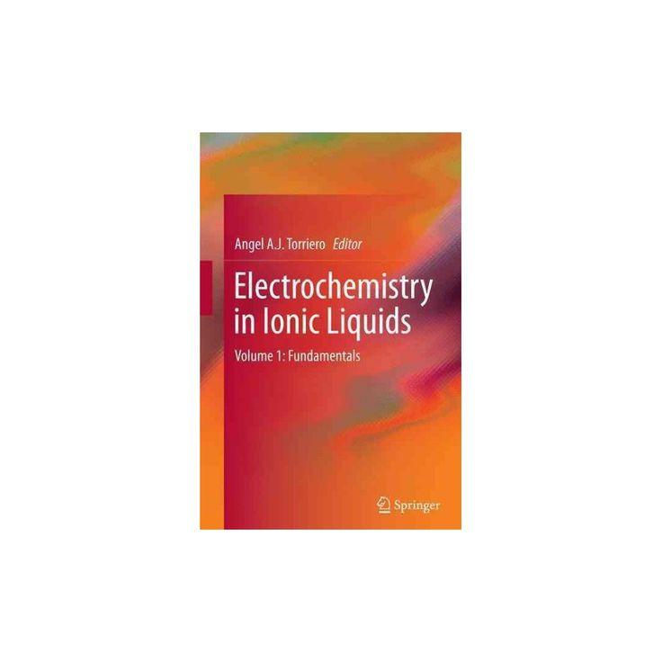 Electrochemistry in Ionic Liquids : Fundamentals (Vol 1) (Reprint) (Paperback)