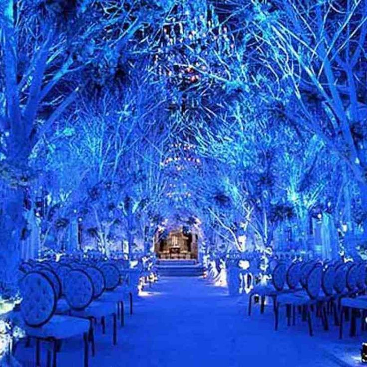 Winter Themed Wedding Ideas: 13 Best Work Party Ideas Images On Pinterest