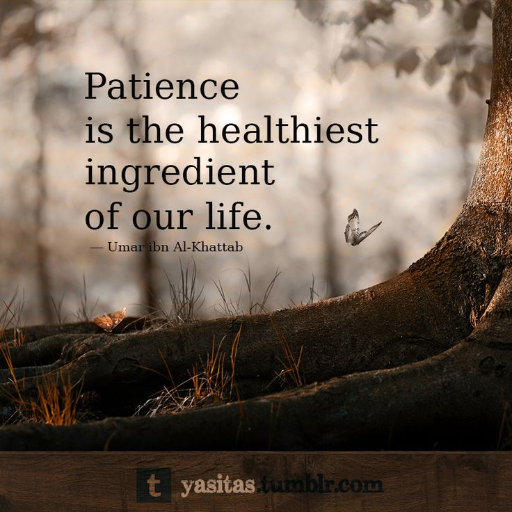 "patience in islam ""allah surely loves those who are the sabireen (patient)  he turns back on his  face (ie reverts back to disbelief after embracing islam."