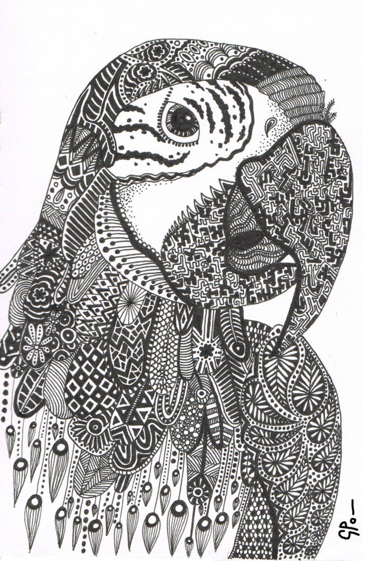Coloring pages starfish intermediate - Parrot Abstract Doodle Zentangle Zendoodle Paisley Coloring Pages