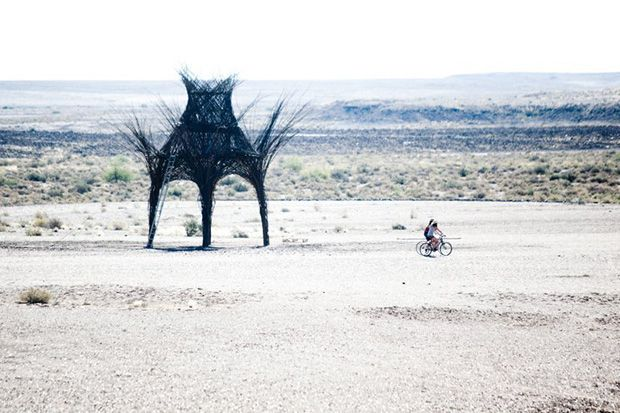 Art Exhibition in South Africa: AfrikaBurn 2014, Tankwa Town