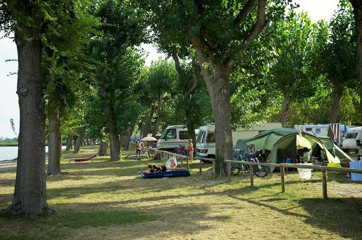 Camping San Francesco - Italien Gardasee Desenzano del Garda
