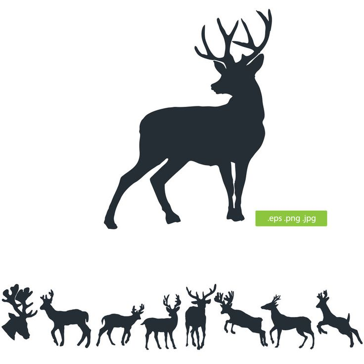 Deer silhouette by silhouettes-clipart