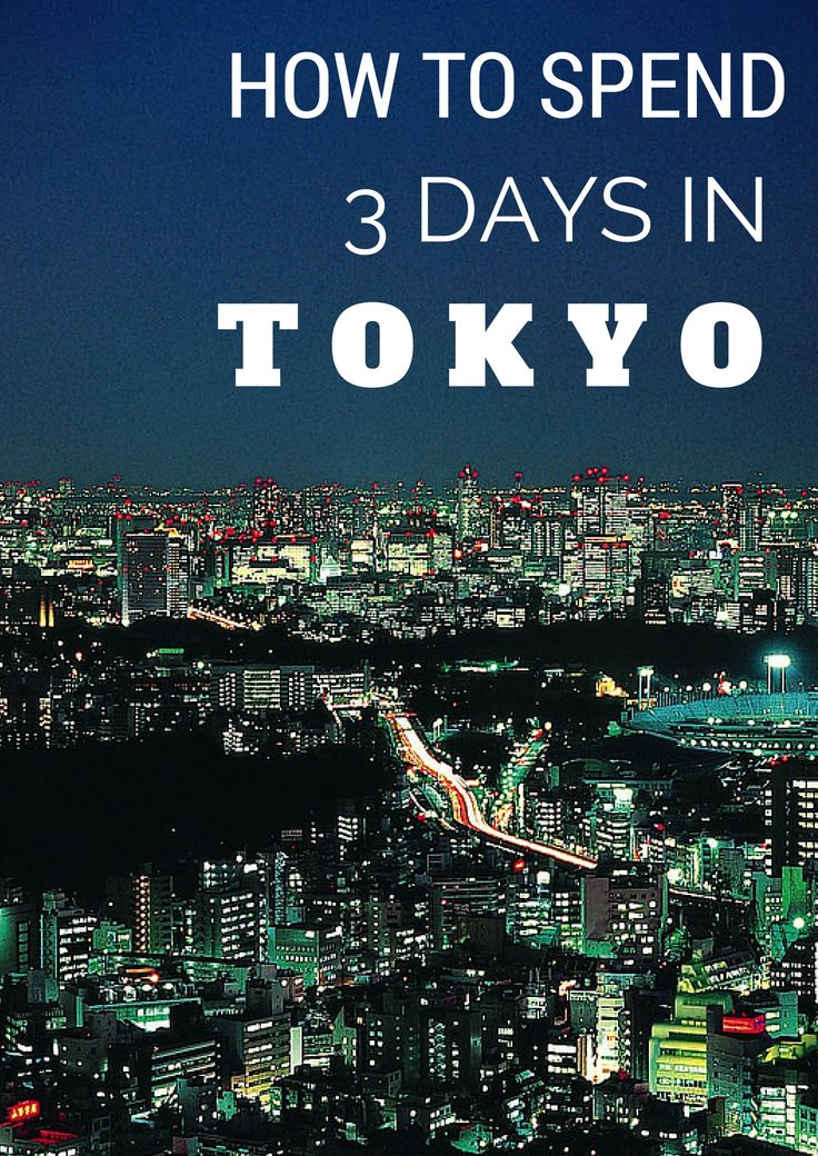 Your Guide for 3 Days In Tokyo