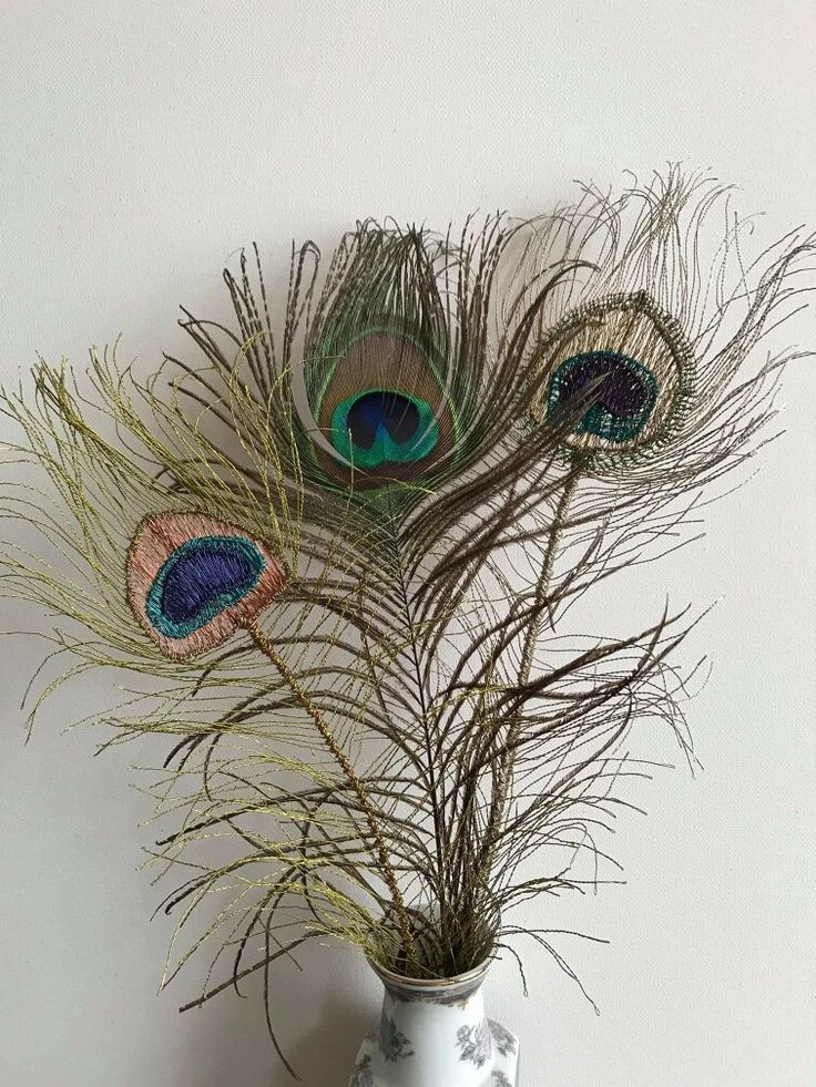 Wire Peacock Feathers with real