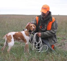 Training A Puppy For Hunting | Bird Dogs | Brittany Spaniel | Gordy Krahn | Prairie Chicken
