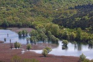 Laghi di Doberdo' visti dall'alto