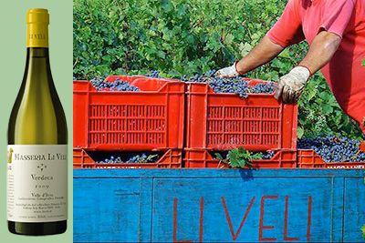 Elin's Wine Pick: 2011 Masseria Li Veli Askos Verdeca #ZesterDaily #ElinMcCoy