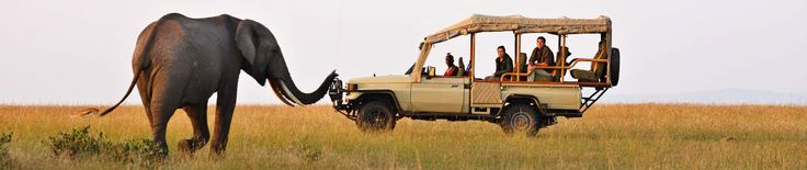 Kenya - from the Masai Mara migration to the wildlife of Amboseli and the beaches of the coast, Kenya delivers classic African holidays.