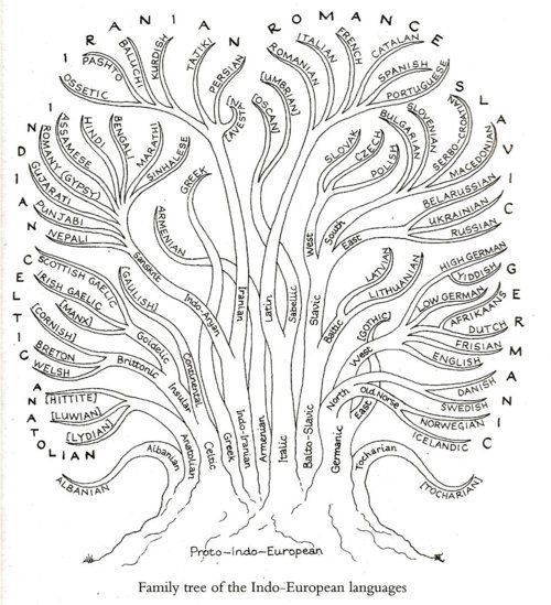 The Linguistic Tree of Gondor. matthen: An interesting diagram showing the family tree of Indo-European languages. At the bottom is Proto-I...
