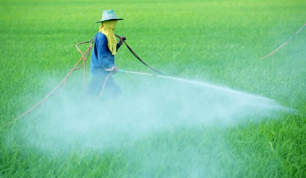 Pesticides Market : India, China And Japan Industry Analysis, Size, Share, Growth, Trends and Forecast, 2009 - 2016 #pesticidesmarket