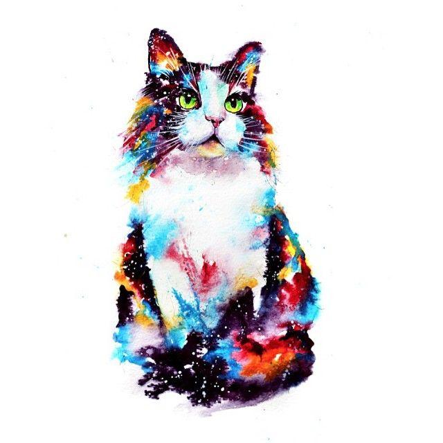 20 gatos coloridos que los amantes de los gatos querrán abrazar cuando vean