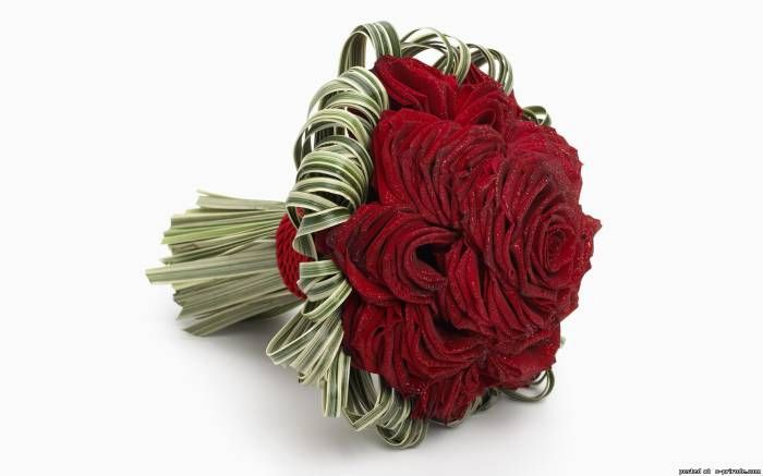 Красные розы фото - Розы цветы картинки