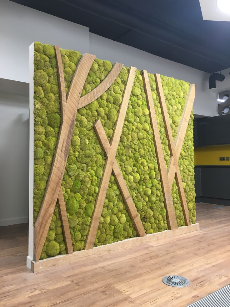 Preserved bunn moss wall screen/divider in client's breakout area                                                                                                                                                      More