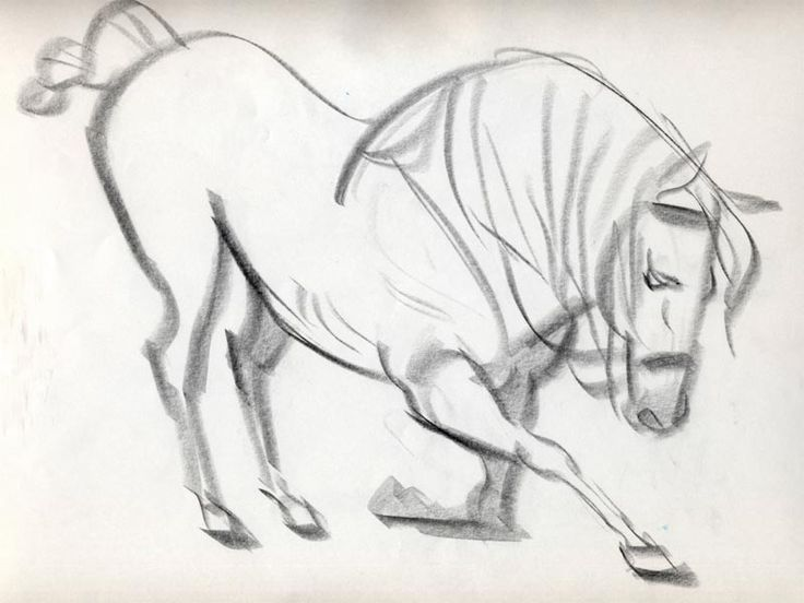Tangled (2010) Pascal & Maximus || CHARACTER DESIGN REFERENCES | Find more at https://www.facebook.com/CharacterDesignReferences if you're looking for: horse art